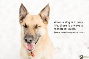 AS DOGS WOULD SAY: DOG QUOTE 04
