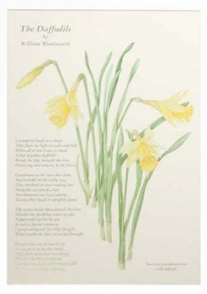 daffodils by ted hughes Wind by ted hughes wind learning guide by phd students from stanford, harvard, berkeley.