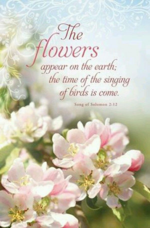 ... ; the time of the singing of birds is come. (Song of Solomon 2:12