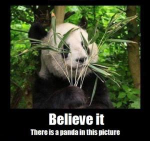 Source: Panda Ninja | picture 17589