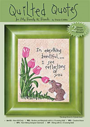 Quilted Quotes Machine Embroidery CD