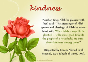 Kindness (Prophet Muhammad ﷺ Quote Reported by `Aisha)