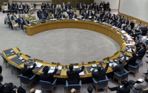 The Security Council Voted...