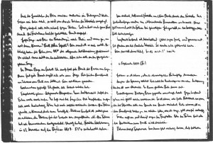 Pages from Joseph Goebbels's diary
