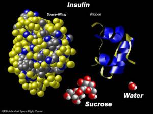La regeneración de células beta es un avance en la diabetes