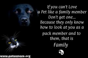 ... pet, animal, inspiring quotes for animal lovers, petsnmore.org, family