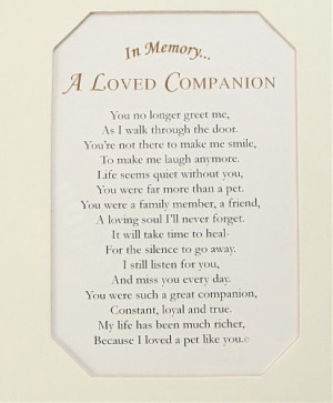 loss of a pet sympathy gift bracelet