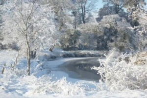 Let it snow, let it snow, let it snow..... *