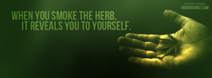 Love Weed Quotes Substitute weed for tobacco