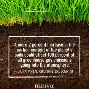 The Solution Under Our Feet: How Regenerative Organic Agriculture Can ...