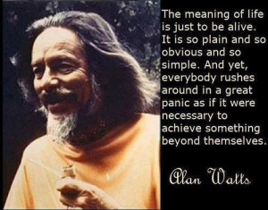 Alan Watts Quote - meaning of life