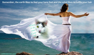 wind-quote-soul-spiritual-freedom-nature-cats