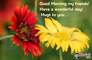 Good morning my friend best friendship quotes to wish good morning to ...