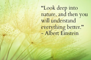 Look deep into nature, and then you will understand everything better ...