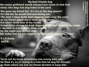 Miss My Dog Quotes