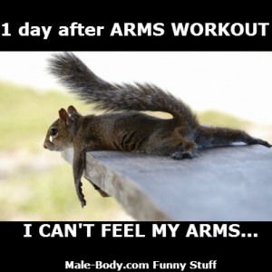 Day After Arms Workout I Can't Feel My Arms