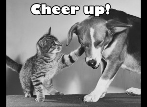 Cheer Up Cat and Dog eCard