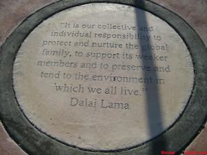 Hard Rock Park - Quote 2