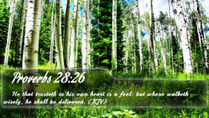 Proverbs 28:26 - Bible Verse Quote by bible-quote