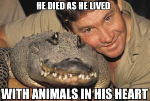 Remembering the beloved Steve Irwin