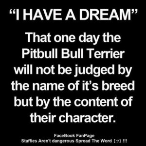 """Have A Dream"""" That One Day The Pitbull Bull Terrier Will Not Be ..."""