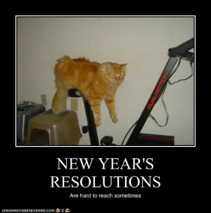 Funny New Years Resolutions for 2013