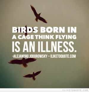 Flying Bird Quotes And Sayings