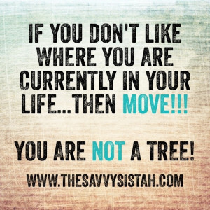 """Savvy Quote: """"If You Don't Like Where You Are…"""