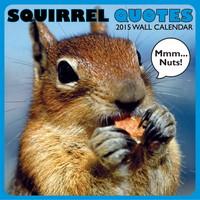 Squirrel - Quotes Wall Calendar 2015 thumbnail at MegaCalendars.com