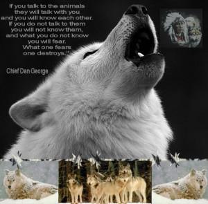 photo nativeindianwolftribute.jpg