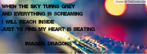 Imagine Dragons (Bleeding Out) Profile Facebook Covers