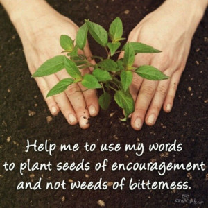 Plant seeds of encouragement