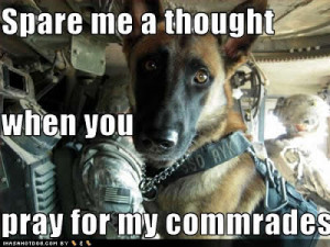 Funny German Shepherd Quotes A respectful mellow.