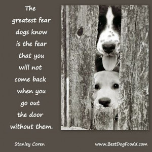 Dog Poems And Quotes