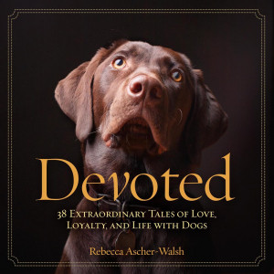 Devoted-cover-image.jpg