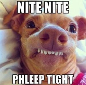nite nite, phleep tight