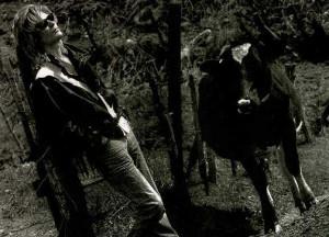 Daryl Hall Photos Who...
