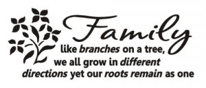 Family like branches on a tree Vinyl wall lettering stickers quotes ...