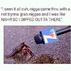funny lobster