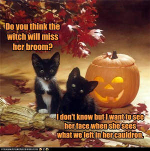 Funny Witch Photo Halloween...