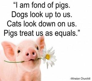 Piglet Quote