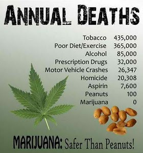 Weed Day Poster -peanuts and marijuana