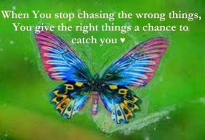 Chasing butterflies lets you catch the beauty of life.