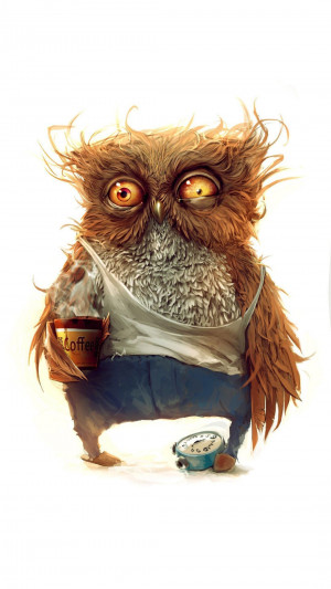 funny coffee owl wallpaper funny coffee owl download this wallpaper