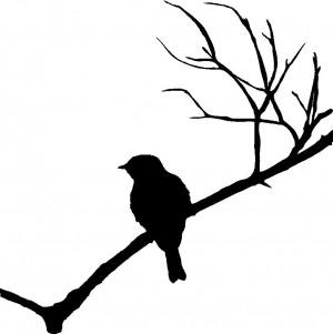 bird on branch item bird01 regular price $ 29 95 sale price $ 25 46 ...