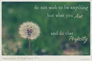 inspirational wish quotes photo art dandelion