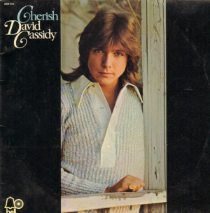David Cassidy Cherish Vinyl Records Cds And Lps