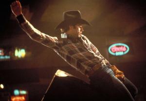 urban cowboy / bud