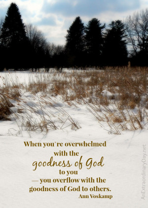The Goodness of God ~ Ann Voskamp Quote :: AnExtraordinaryDay.net