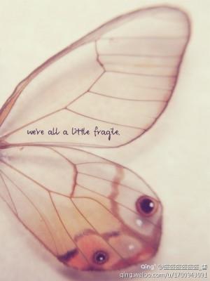 黑暗中等待,挣扎中脱险,破茧成蝶只为与你华丽地 ...